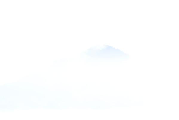 Denali National Park 8/2013